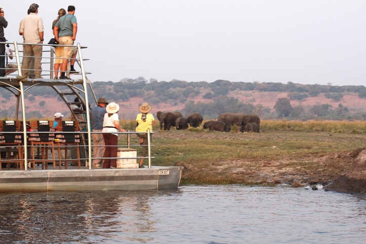 chobe national park elephant boat cruise