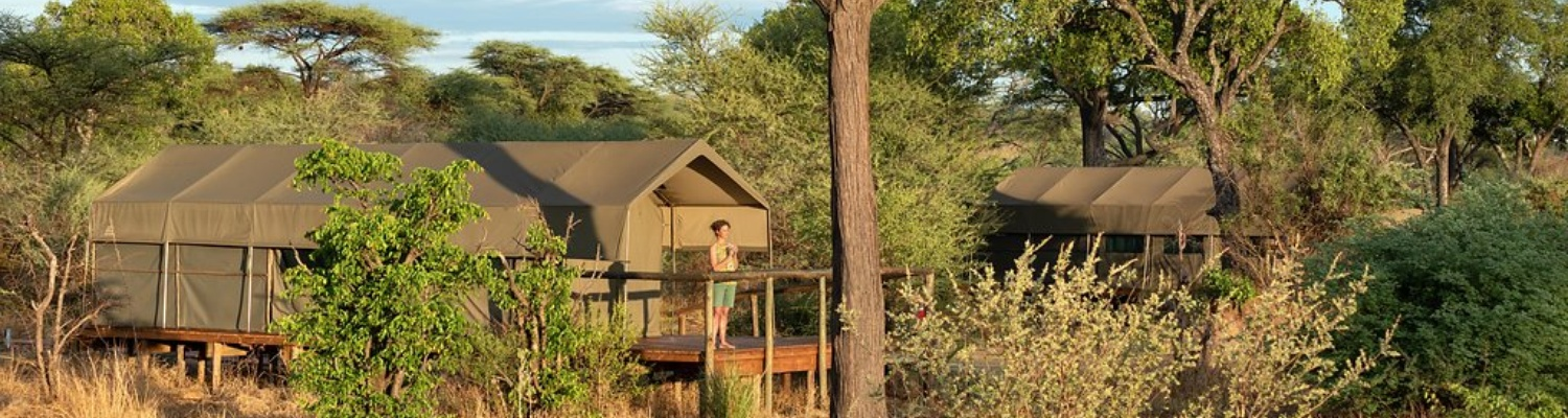 chobe safari lodge tented safari camp and game lodge package